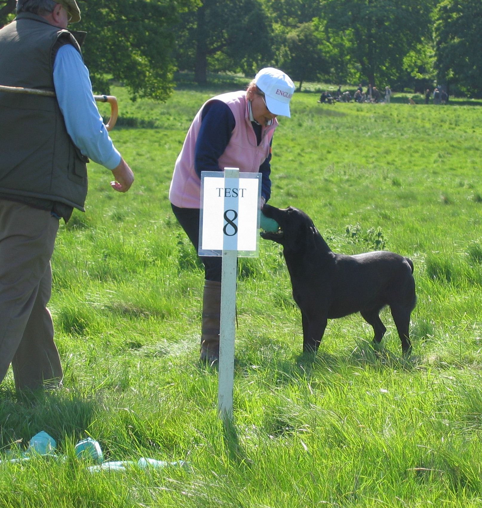 Viper Retrieving to Sandra England Team Competition